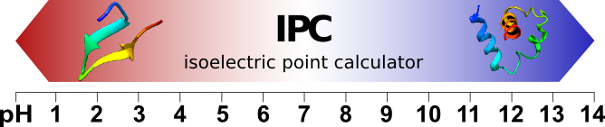 Protein isoelectric point calculator